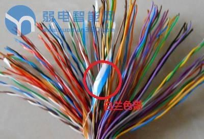 大对数通信电缆图